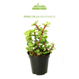 Árbol de la abundancia