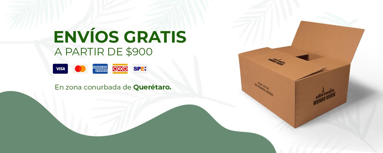Envíos gratis en Querétaro